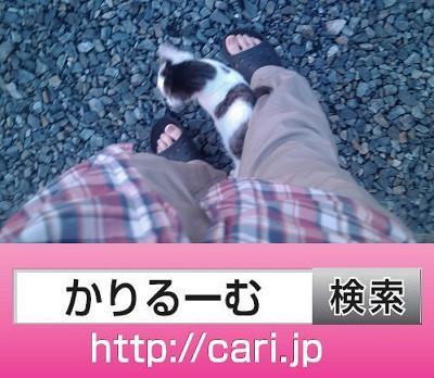 2016年06月05日18:02:19 猫H