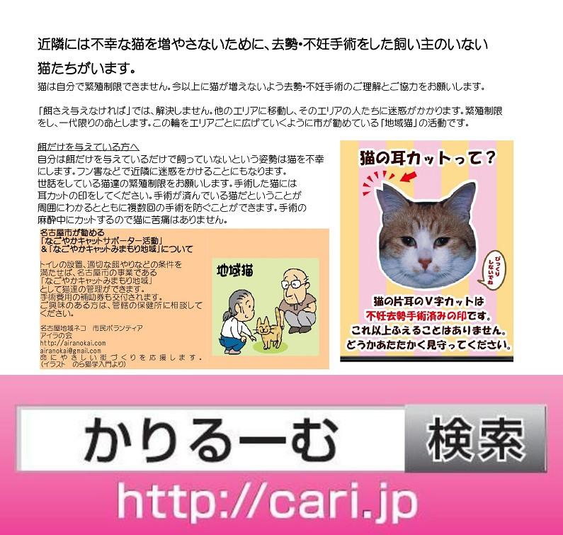 地域猫活動[動物愛護関連]