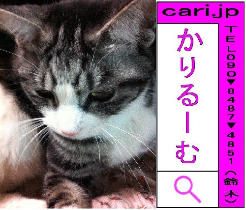 2012/01/14(20:45)A撮影写真 猫S