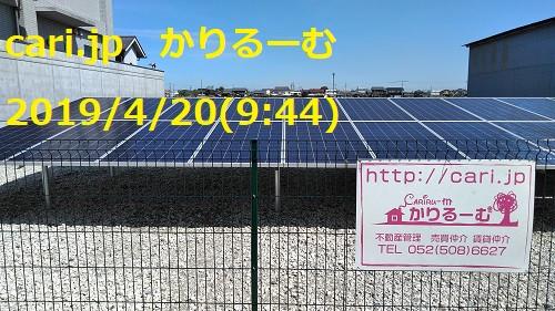 ランゴ【映画別英単語】 cari.jp